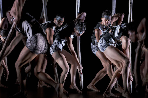 Bangarra Dance Theatre's 'Lore'. Photo Jeff Tan