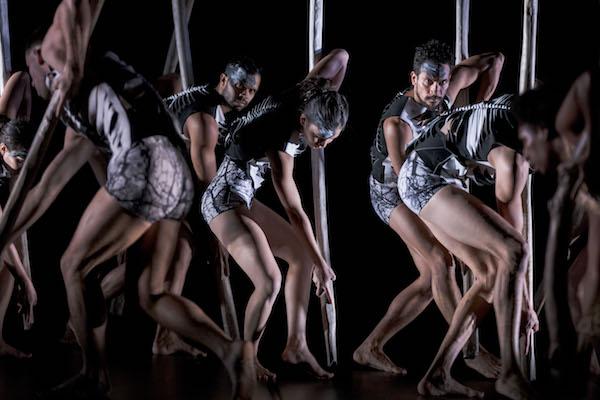Bangarra Dance Theatre's 'Lore'. Photo Jeff Tan