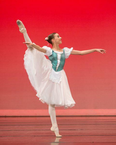Lily Sophia Dashwood
