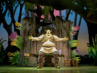 SHREK THE MUSICAL (c) Helen Maybanks